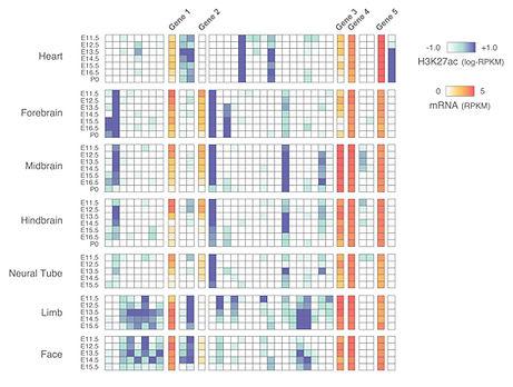 Research_part_2_heatmap_v1_op.jpg