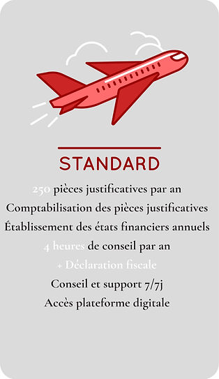 Forfait Comptabilité STANDARD FIDUNEO