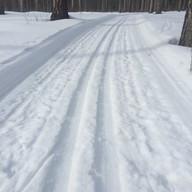 Dashing Through The Snow by Nicola Simpson