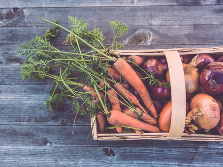 Plant-based diets result in better digestion