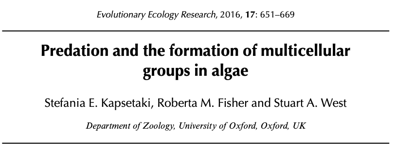 Predation and the formation of multicellular groups in algae