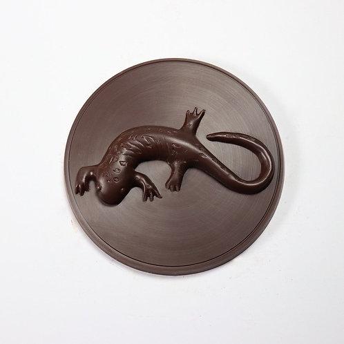 Salamander Medallion