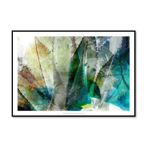 Agave Abstract II - Framed & Mounted Art