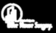 C. White - New HS Logo.png