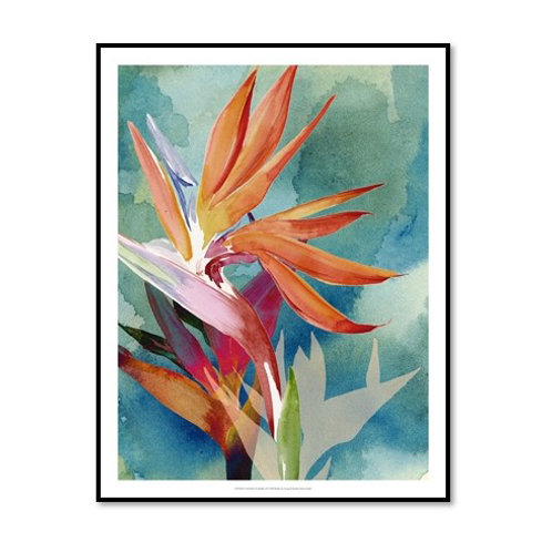 Vivid Birds of Paradise II - Framed & Mounted Art