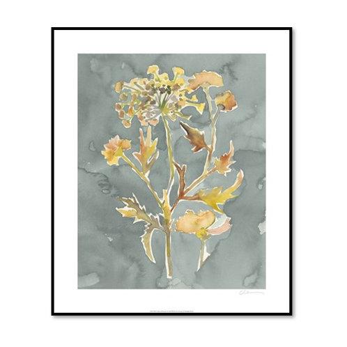 Collected Florals I - Framed & Mounted Art