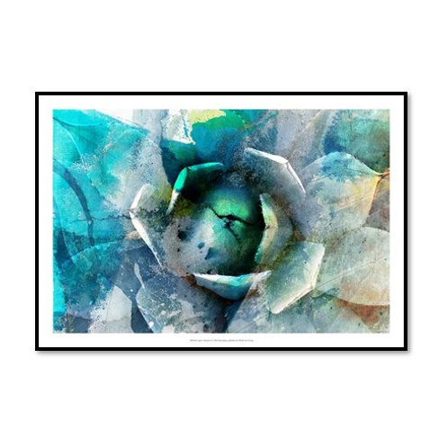 Agave Abstract I - Framed & Mounted Art