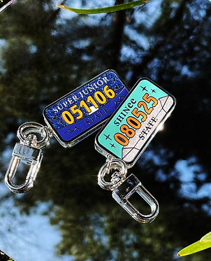 SMTOWN's NUMBER PLATE Keyring