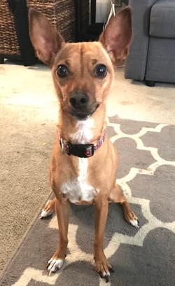 Emma-adopted