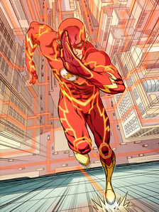 FLASH COVERS