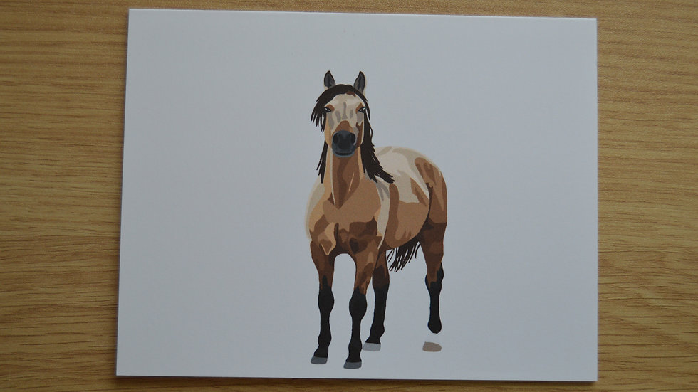 Buckskin Stationary