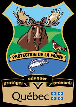 logo-agentprotection