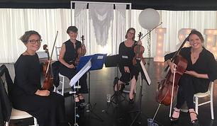 Picture of female string quartet