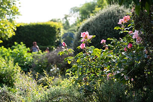 Watch the little ones enjoy exploring the Rose Garden and get close to nature