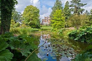 Pond at Myddelton House Gardens