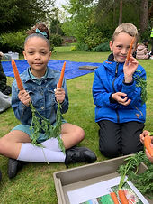 Two children looking at plants