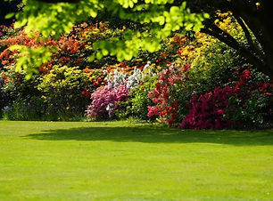 Capel-Manor-gardens-web-728x410.jpg