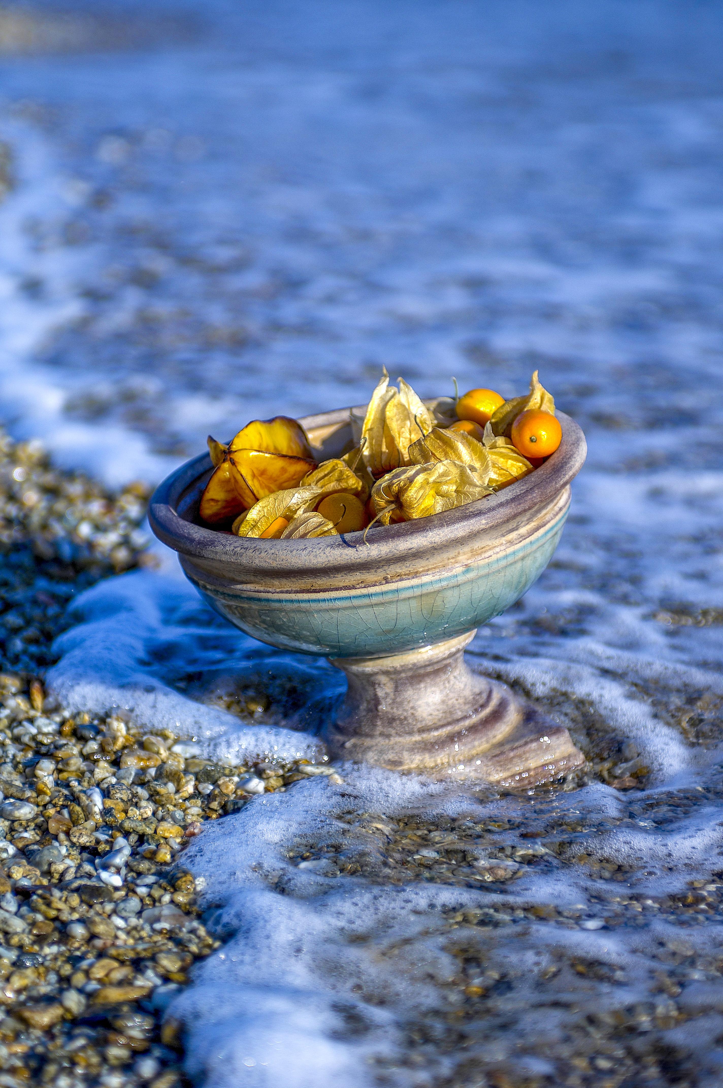 Vase sur l'eau