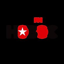Msc_New_logo.png