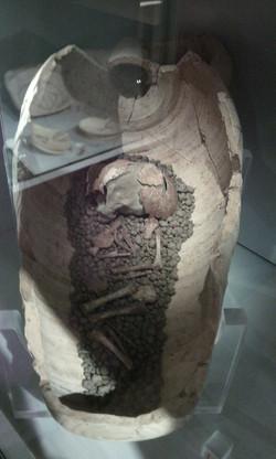 Anfora funeraria (studium2000)