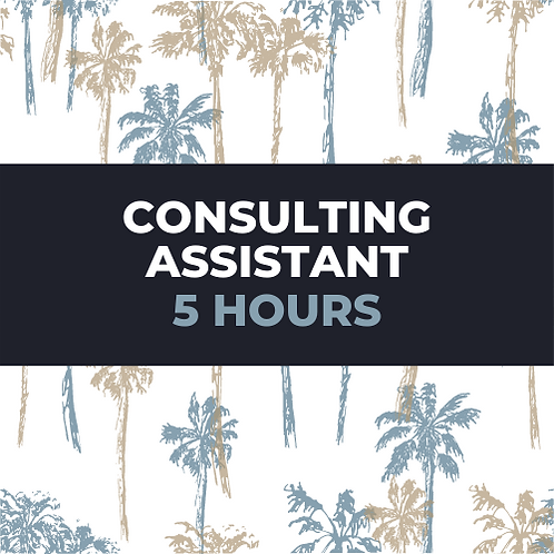 consulting assistant packages