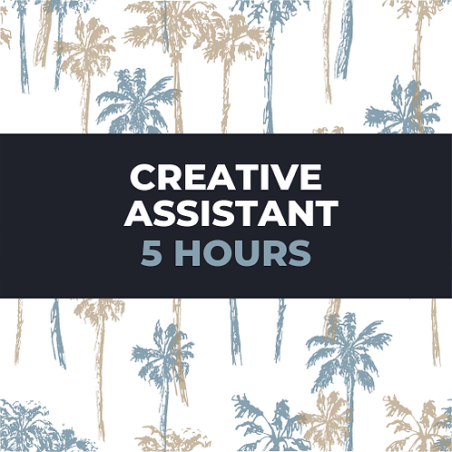 creative assistant 5 hour package