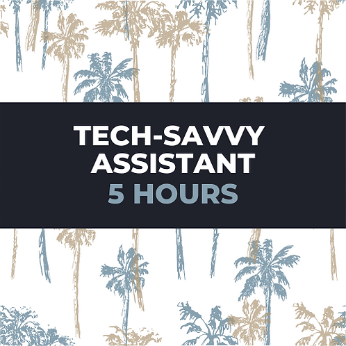 tech savvy assistant package
