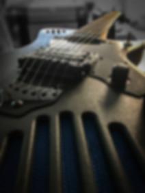 guitarmadillo texture closeup.jpg
