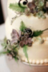 cake 2-harper.JPG
