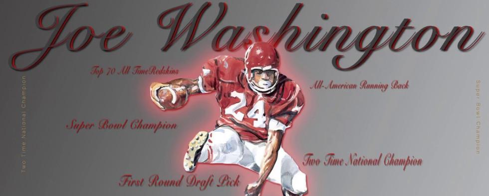 Joe Washington Highlights