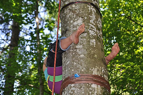 medium klettern, mobiler Seilgarten, temporärer Seilgarten, mobile Seilarbeit, Spaß, Bewegung, Freiheit, Wald, Seil, MobilerSeilgarten, Baum, Lebensfreude, Urlaub, Spaß, Bewegung, Baumklettern, außergewöhnlich, Erlebnis,