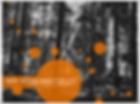 Ausbildung zum Hochseilgartentrainer / Hochseilgartentrainerin, Hochseilgarten, Adventure Park, Waldseilgarten, Klettern, Erlebnis, Bewegung, Gesundheit, Freizeit, Sport, Urlaub, Familie, Wald