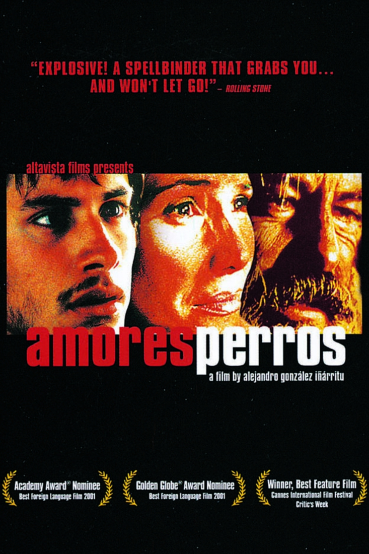 Amores Perros 2000 amores perros opening scene