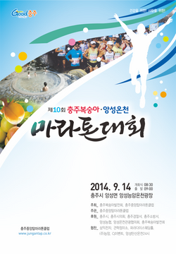2014마라톤대회