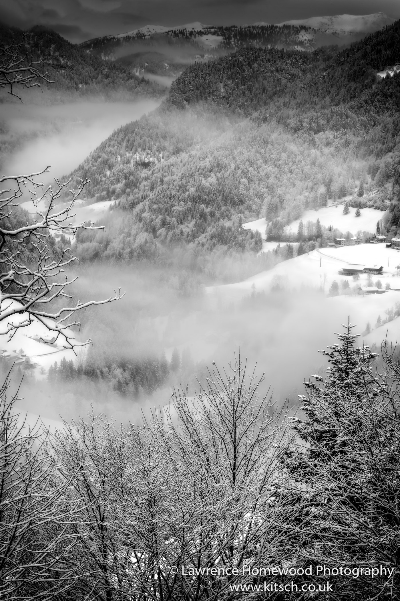Fresh Snow Misty Morning