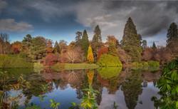 Autumn Shades Sheffield Park - pdi
