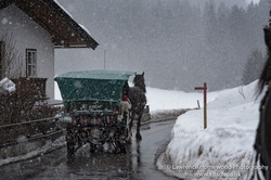 kitzbuhl Cart Ride in the Snow