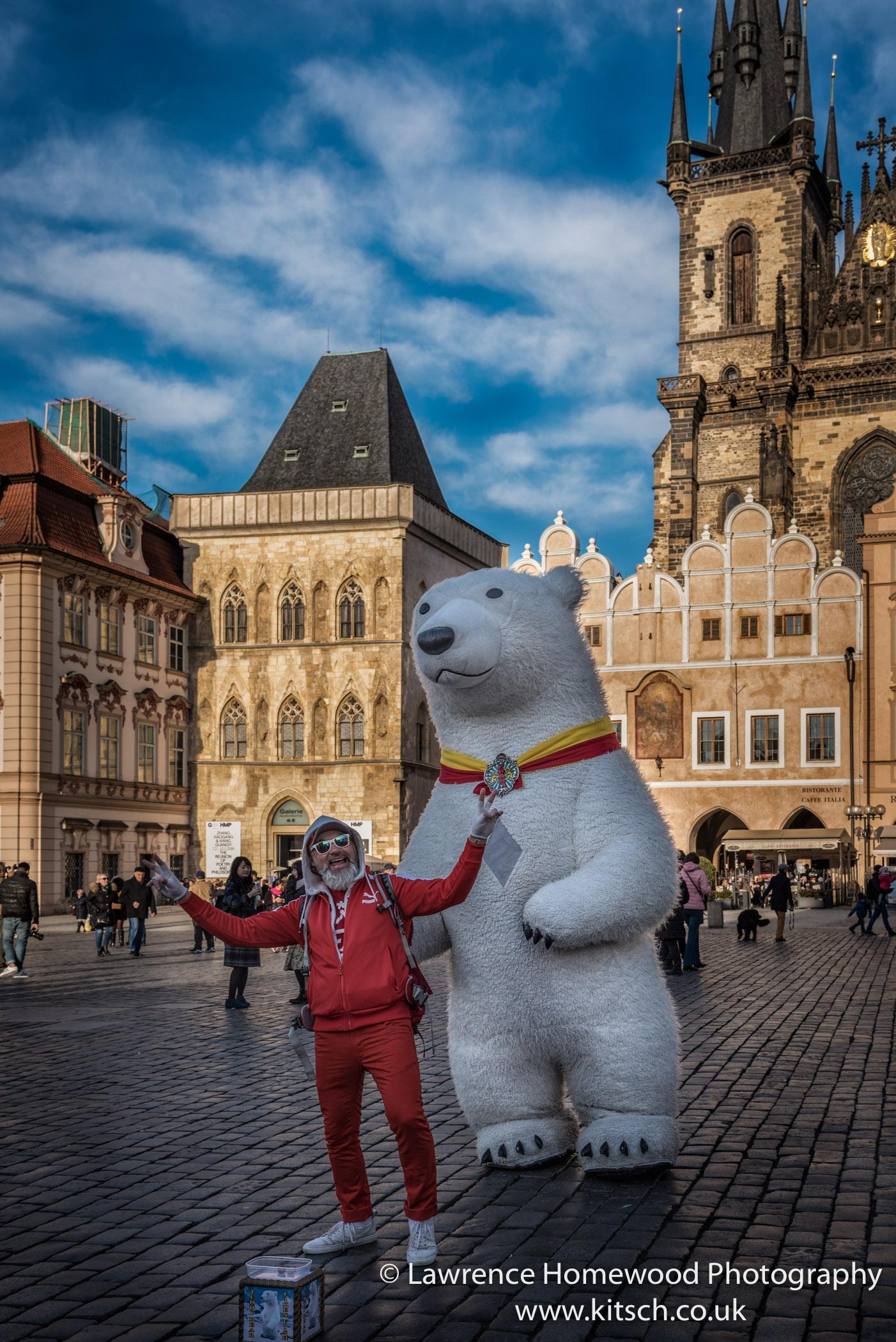 Polar Bear Prague Square