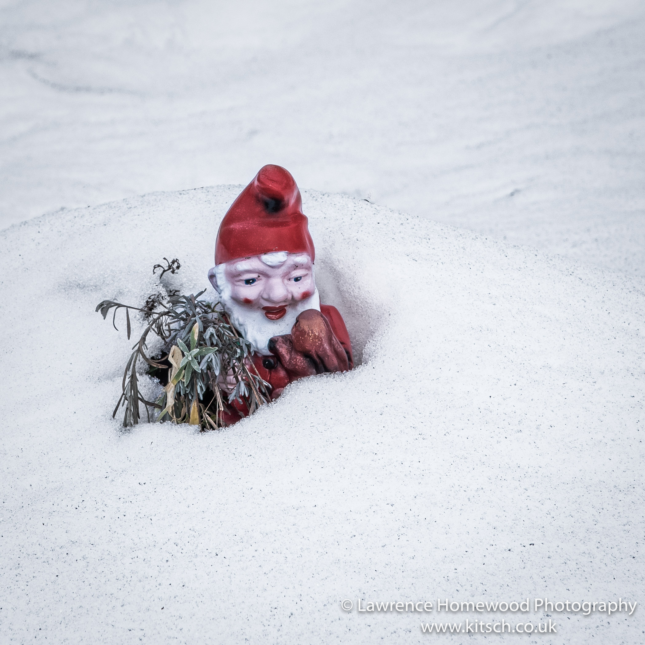 Forgotten Gnome in the Snow
