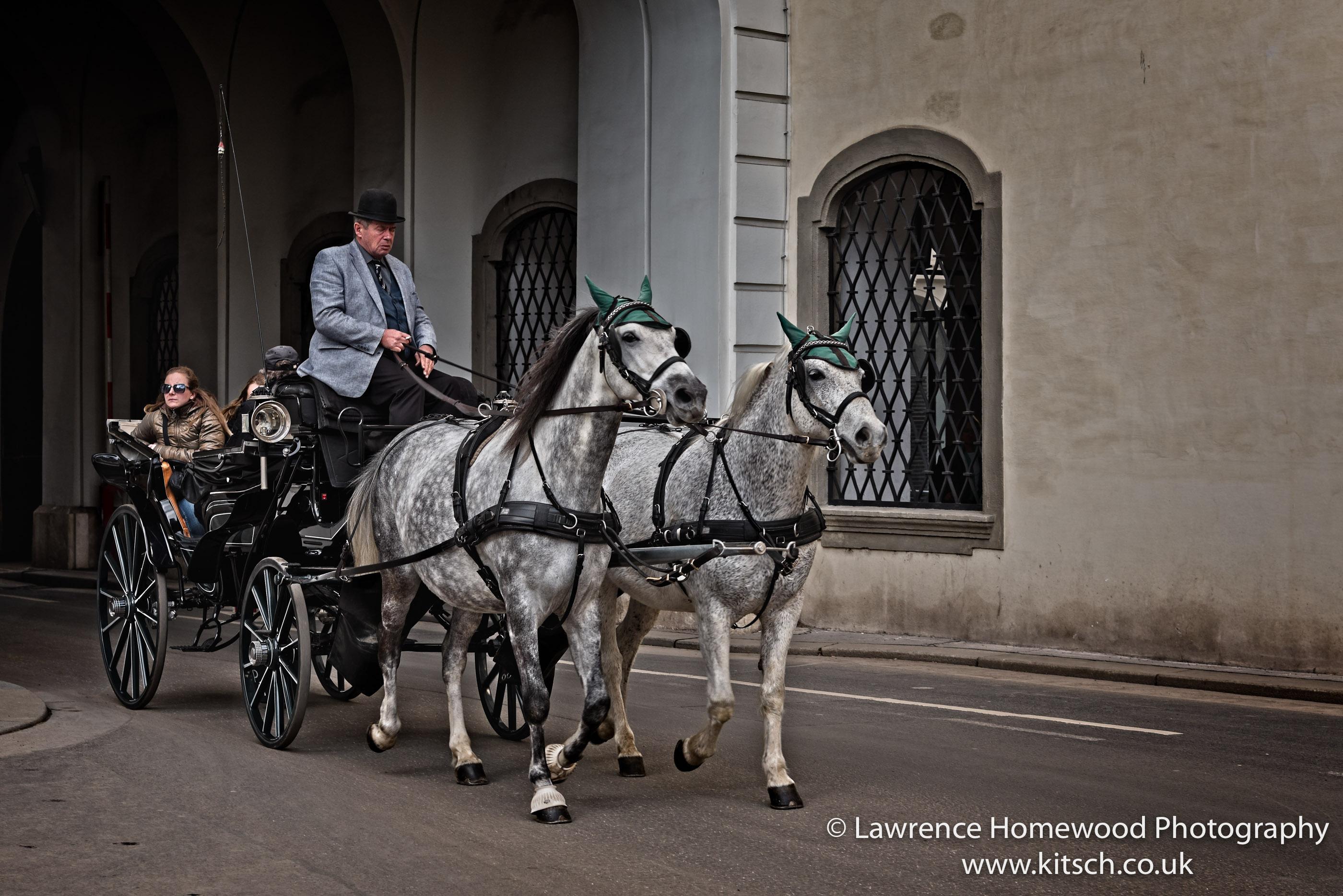 Vienna Horse and Cart