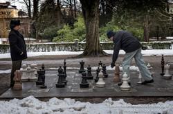 Chess Among Men