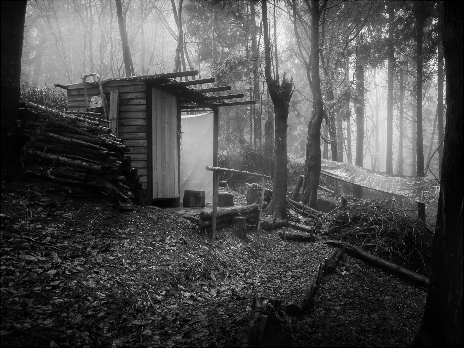 woodmans shed in the mist