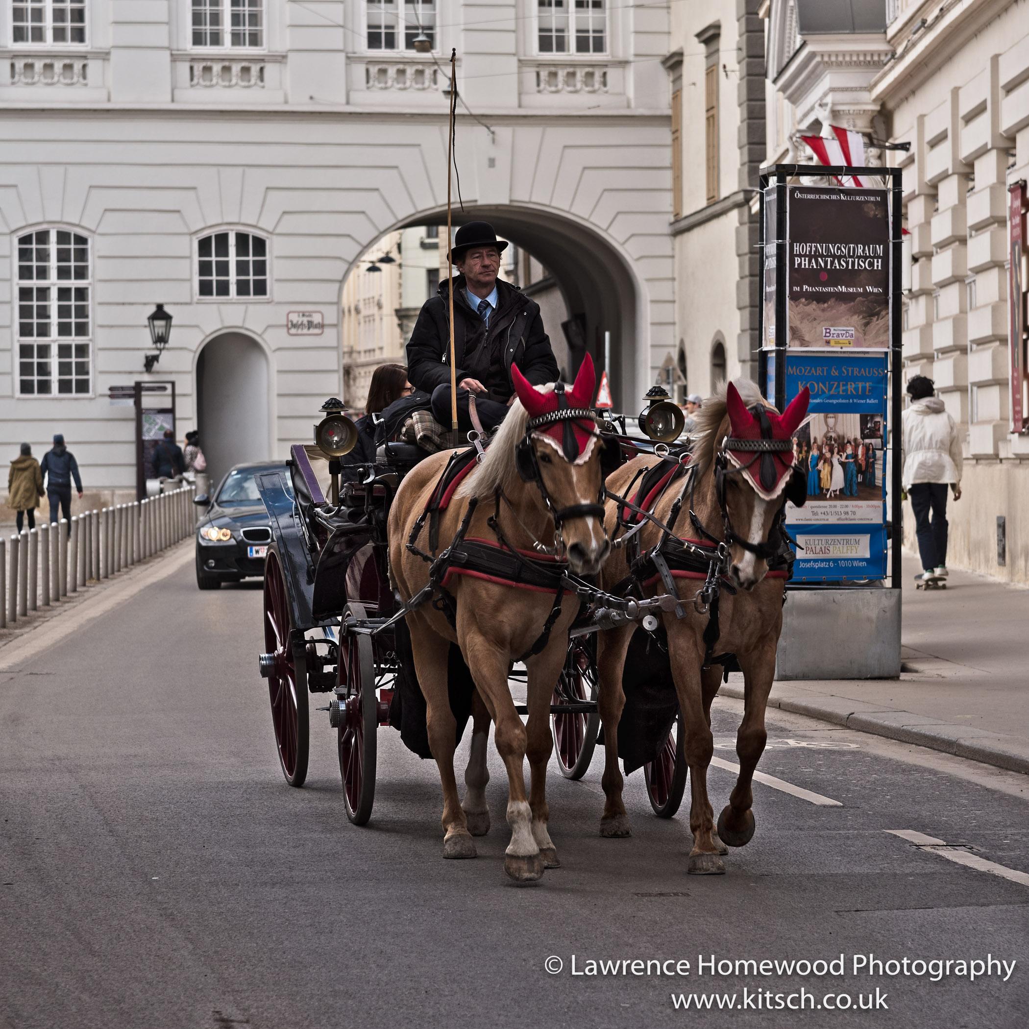Vienna Horse and Cart 1