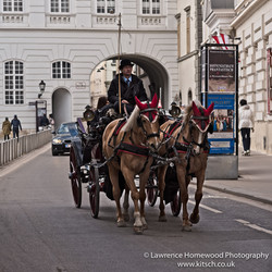 Vienna Horse and Cart 1
