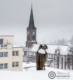 Fertwangen Bird of Prayer