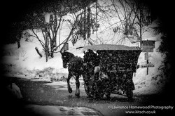 kitzbuhl Cart Ride Spotlight