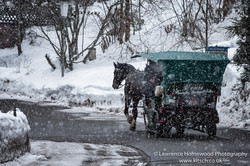 kitzbuhl Cart Ride in the Snow 1