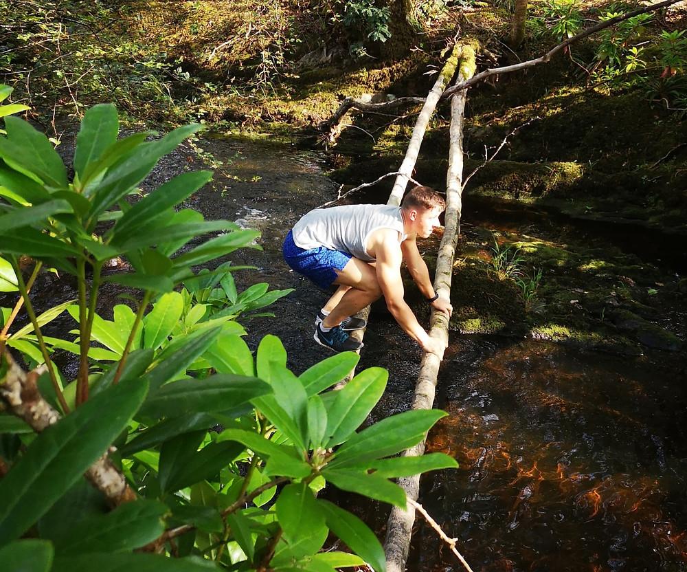Finn Glenn in the forest balancing on trees. Kenmare, Ireland