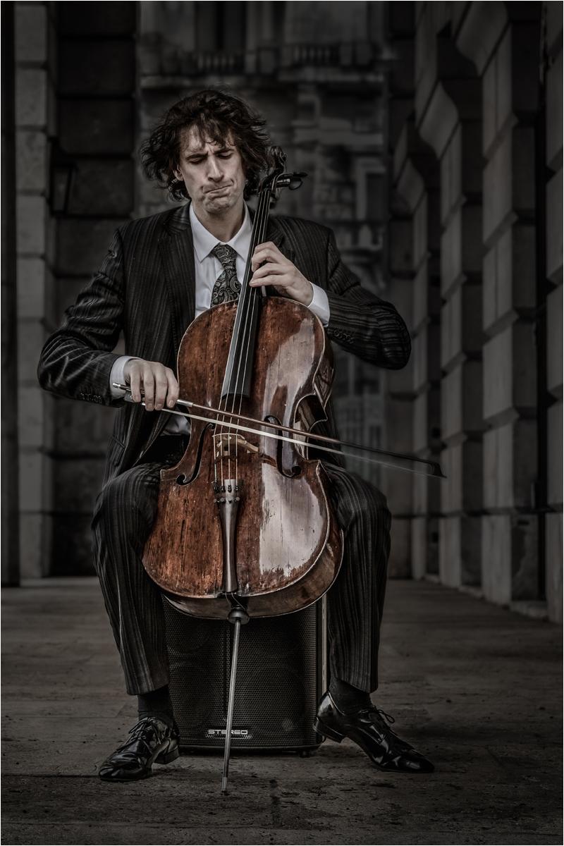 Street Musician Vienna Sounds