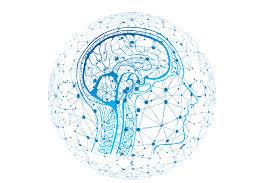 I diversi modelli di apprendimento automatico, Machine Learning